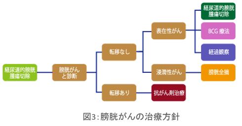 図3膀胱がんの治療方針